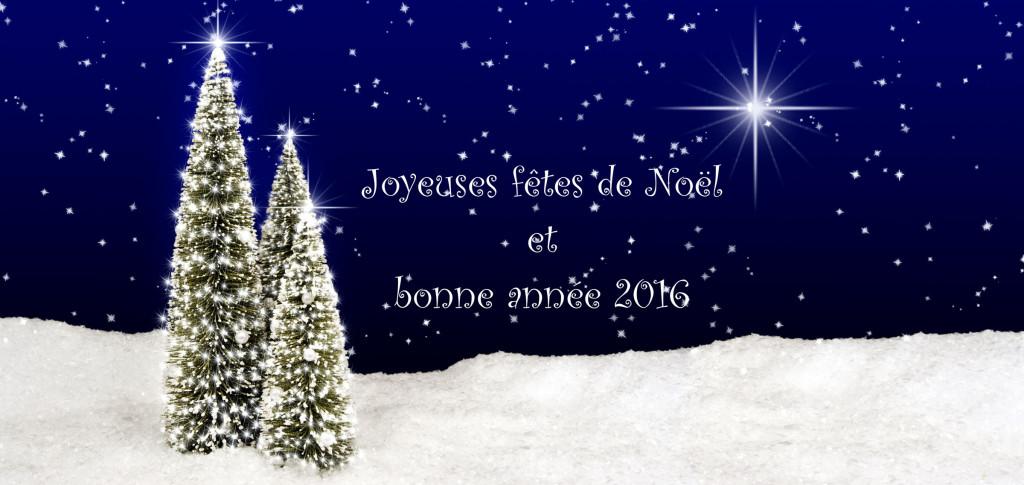 Joyeuses fêtes de Noël et bonne année 2016