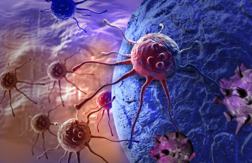Le cancer, une simple question de « malchance » ?