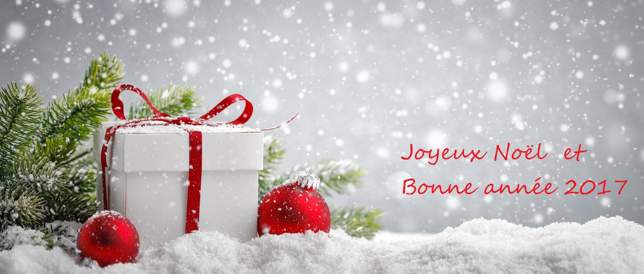 Bonne Annee Joyeux Noel.Joyeux Noel Et Bonne Annee 2017 Notre Experience En Micro