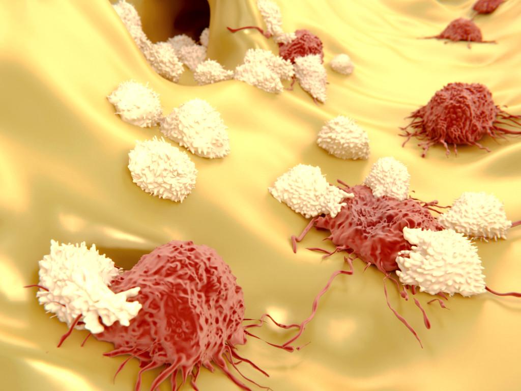 Quel rôle le système immunitaire joue-t-il dans le contrôle de la croissance tumorale ?